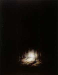 Wood (2004-07), Oil on Board, 47 x 36.75cm (18.5 x 14.5 inches)