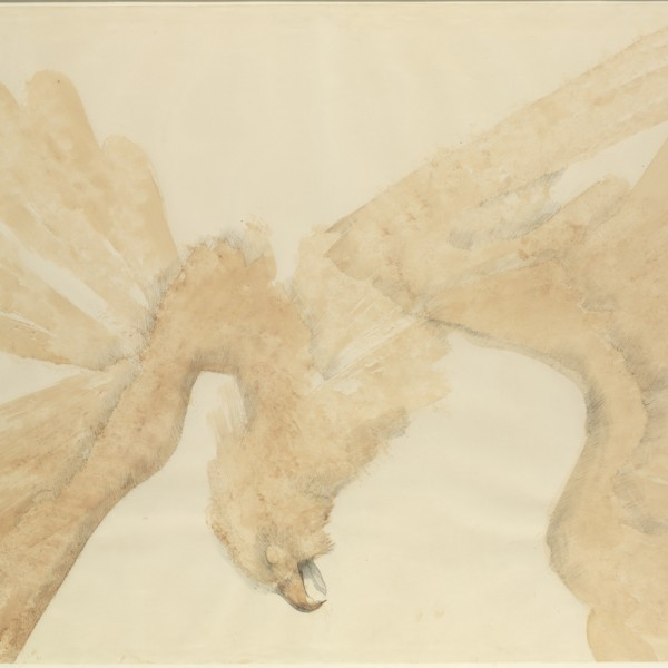 Fallen Eagle (1967), Watercolour and Pencil on Paper, 72 x 98cm