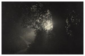 Sarah-Gillespie-Deep-Lane