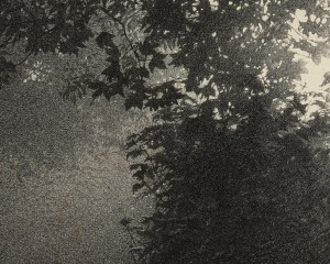 Sarah Gillespie Deep Lane Detail
