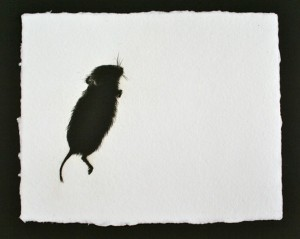 Vole, Drypoint Engraving, Edition of 6, 18 x 22cm