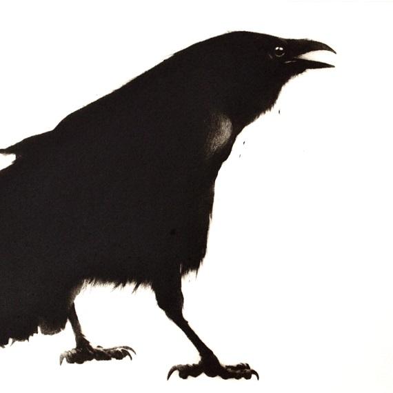 Crow (2013), Drypoint Engraving, 37 x 37cm