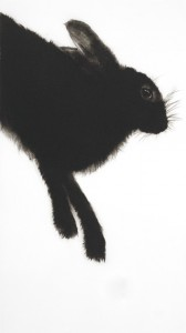 Hare (2013), Drypoint Engraving, 61 x 34 cm