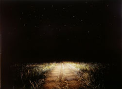 Straw Road - Port Eliot (2004-07), Oil on Board, 45.75 x 62.25cm