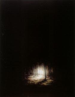 Wood (2004-07), Oil on Board, 47 x 36.75cm