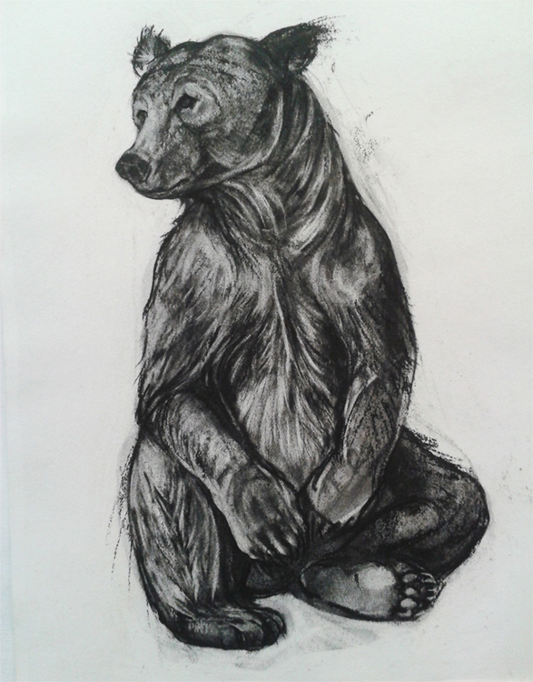 Kendra Haste - Seated Brown Bear 1